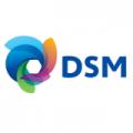 dsm_logo_new.31