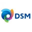 dsm_logo_new.38