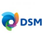 dsm_logo_new.12
